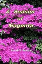 A Season of Magenta
