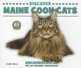 Discover Maine Coon Cats | Trudy Micco |