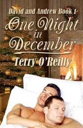 One Night in December