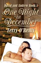 One Night in December | Terry O'reilly |