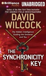 The Synchronicity Key | David Wilcock |