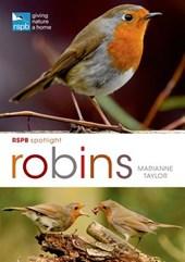 RSPB Spotlight: Robins