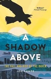 A Shadow Above | Joe Shute |