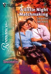 A Little Night Matchmaking (Mills & Boon Silhouette)