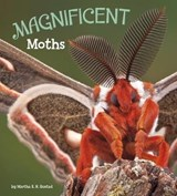 Magnificent Moths | Martha Eh Rustad |