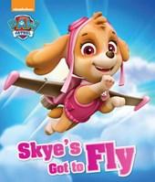 Nickelodeon PAW Patrol Skye's Got to Fly