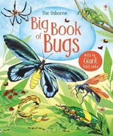 Big Book of Bugs | Emily Bone |