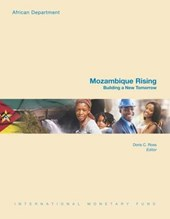 Mozambique Rising