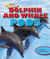 Dolphin and Whale Pods