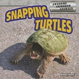 Snapping Turtles | Bethany Baxter |