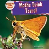 Moths Drink Tears!