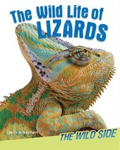 The Wild Life of Lizards