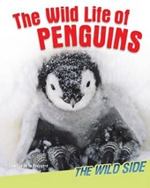 The Wild Life of Penguins