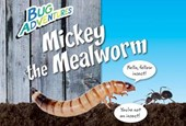 Mickey the Mealworm