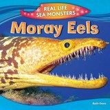 Moray Eels | Ruth Owen |