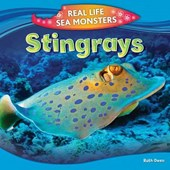 Stingrays | Ruth Owen |