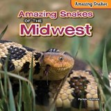 Amazing Snakes of the Midwest | Parker Holmes |