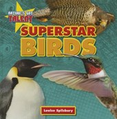 Superstar Birds