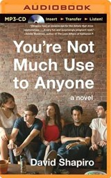 You're Not Much Use to Anyone | David Shapiro |