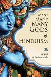 Many Many Many Gods of Hinduism