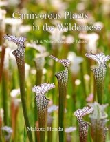 Carnivorous Plants in the Wilderness | Makoto Honda |