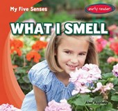 What I Smell