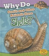 Why Do Snails and Other Animals Have Shells? | Clare Lewis |