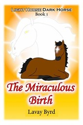 The Miraculous Birth (Light Horse Dark Horse, #1)