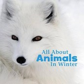 All About Animals in Winter | Martha E. H. Rustad |