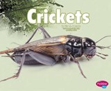 Crickets | Nikki Bruno Clapper |