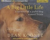 A Big Little Life | Dean Koontz |