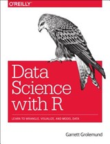 R for Data Science | Garrett Grolemund |