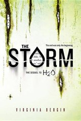 The Storm | Virginia Bergin |