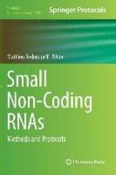 Small Non-Coding RNAs