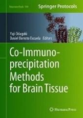 Co-Immunoprecipitation Methods for Brain Tissue
