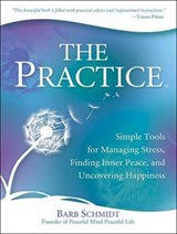 The Practice | Barb Schmidt |