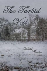 The Turbid Veil | David Chaltas |