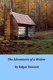 The Adventures of a Widow