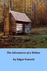 The Adventures of a Widow | Edgar Fawcett |