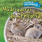 Madrigueras de Conejos (Inside Rabbit Burrows)