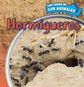 Hormigueros (Inside Anthills)