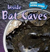 Inside Bat Caves