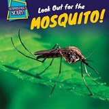 Look Out for the Mosquito! | Maci Dessen |