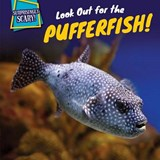 Look Out for the Pufferfish! | Dennis Rudenko |