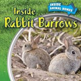 Inside Rabbit Burrows | Liz Chung |