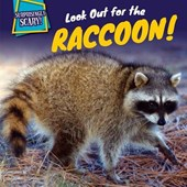 Look Out for the Raccoon! | Caitie Mcaneney |