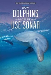How Dolphins and Other Animals Use Sonar