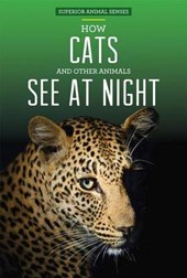 How Cats and Other Animals See at Night