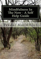 Mindfulness in the Now - A Self Help Guide