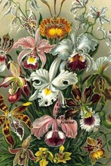 Ernst Haeckel Orchidae Orchid Flowers 100 Page Lined Journal | Unique Journal |